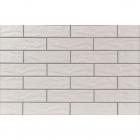 Фасадная плитка 245x65 CERRAD ELEWACJA Krem 9737 (кремовая, структурная)